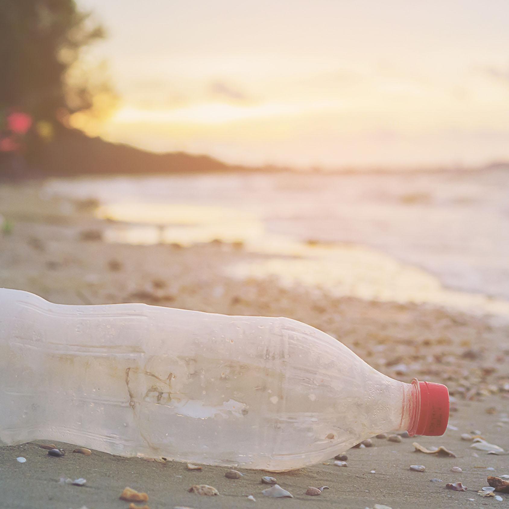 Dia Mundial sem Sacos de Plástico
