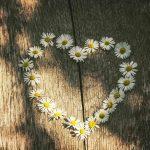 A tolerância por trás do saber amar